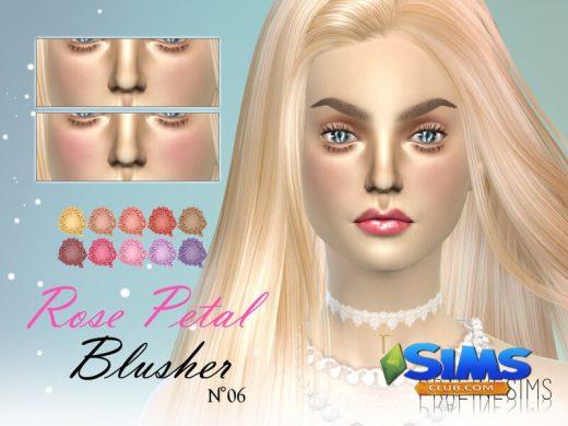 Rose Petal Blusher N06