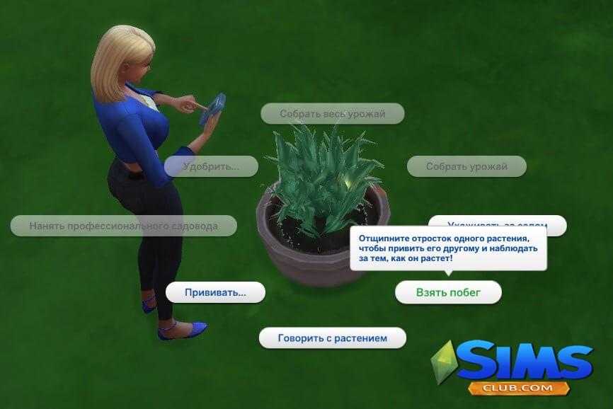 Прививание садовых растений в Симс 4