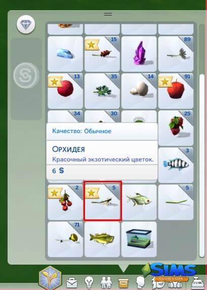 Где найти орхидею в Симс 4