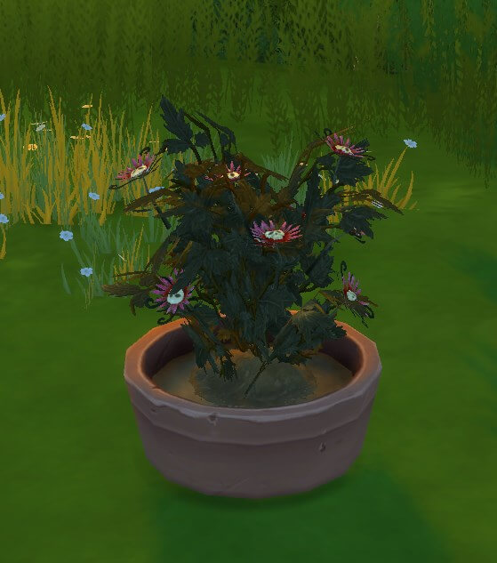 Где взять цветок смерти в симс 4