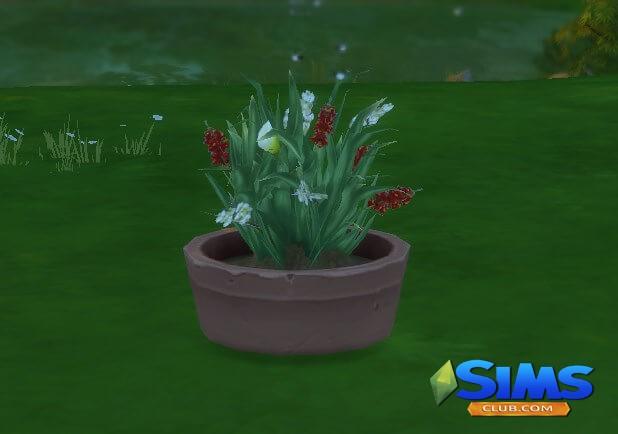 орхидея в симс 4